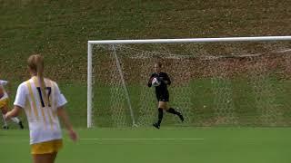 Towson Women's Soccer Falls to Hofstra 3-0