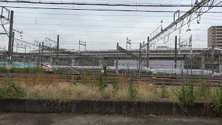 2021/10/16 サンキューMAXとき E4系 P82編成 東京新幹線車両センター | JR East: E4 Series P82 Set at Tokyo Shinkansen Depot