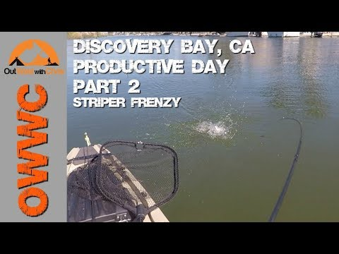 Kayak Fishing Discovery Bay Part 2 - Striper Insanity