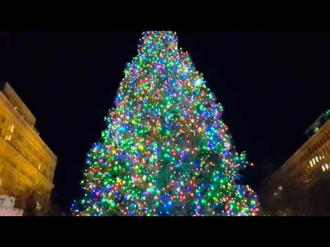 Portland Christmas Tree Lighting 2015