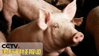 《国际财经报道》 20190909| CCTV财经