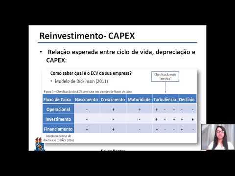 Resumo 4: Reinvestimento dos lucros (CAPEX)