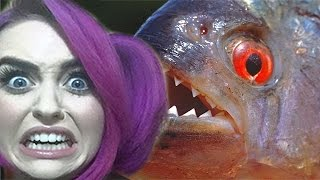 Feed Me Piranha RAGE I Mary Monday