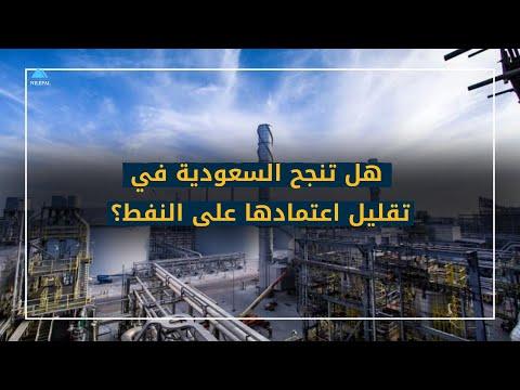 هل تنجح السعودية في تقليل اعتمادها على النفط؟