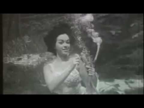 taipa - underwater