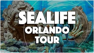 Sea Life Orlando Aquarium Tour