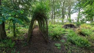 A Stroll Through the Willows on the island of Ireland