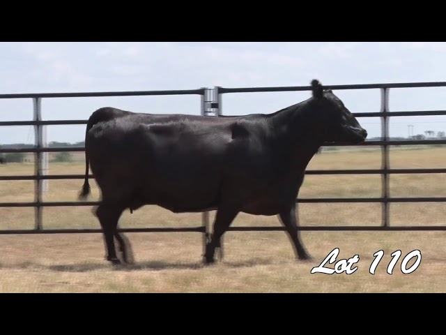 Pollard Farms Lot 110