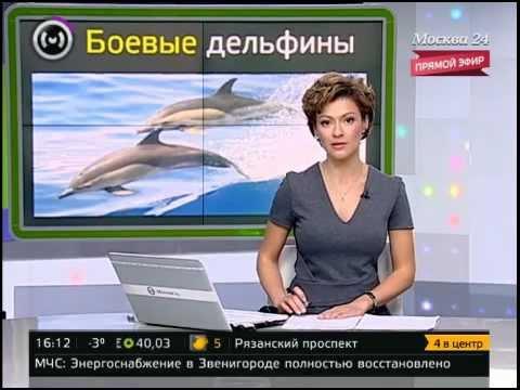 россия 24 официальный сайт программа передач