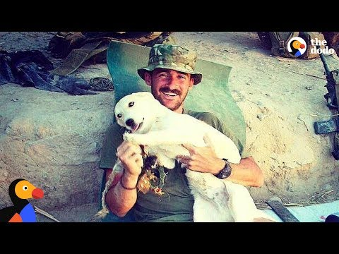 LIVE: Craig & Fred - Marine Saves Stray Dog While Deployed in Afghanistan | The Dodo