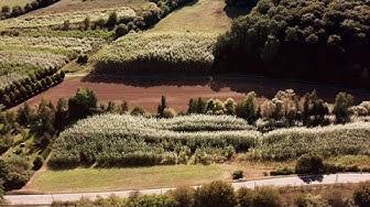 MUNTER - Mehrwert für Landwirtschaft und Natur