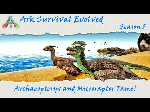 Ark Survival Evolved S5E45: Archaeopteryx and Microraptor Taming!