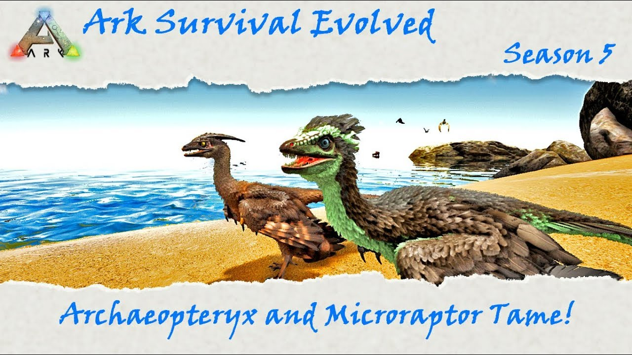 survival ark evolved microraptor gallery