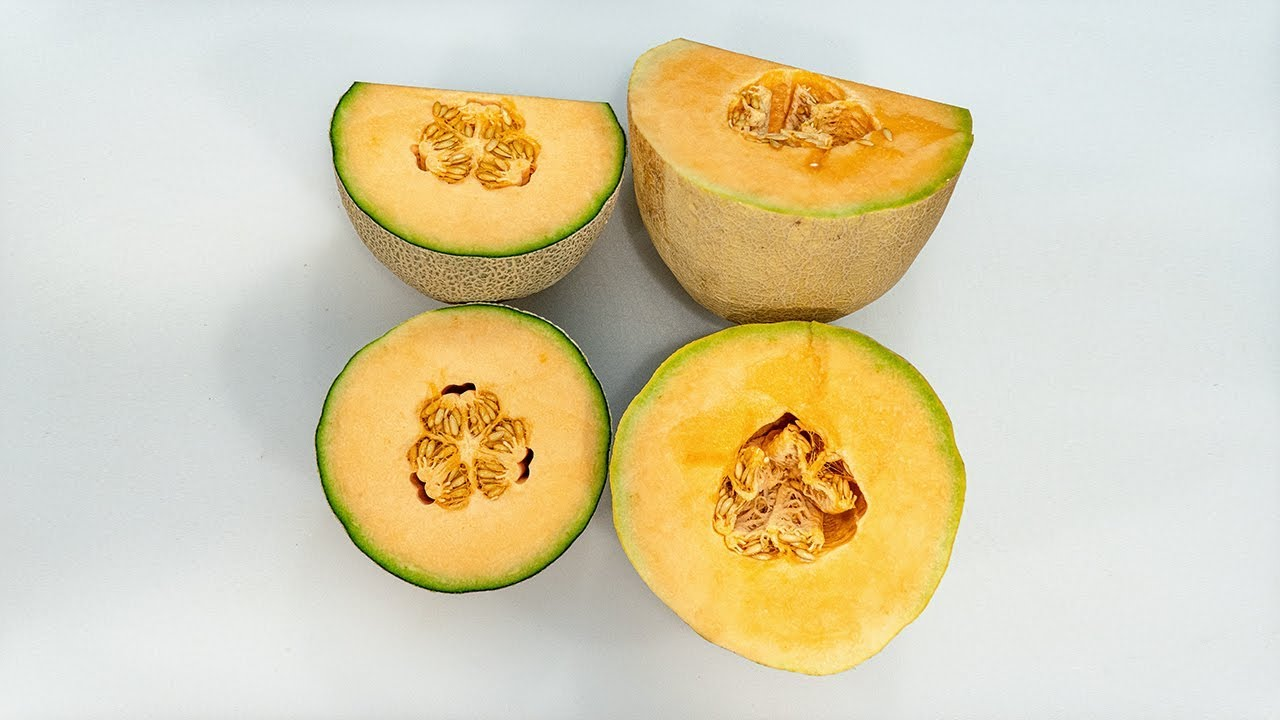 Athena Style Cantaloupes Vs Western Cantaloupes Youtube Cantaloupes (cucumis melo'cantaloupensis') are a rough warty fruit while muskmelon have the characteristic netting on the fruit rind. athena style cantaloupes vs western cantaloupes