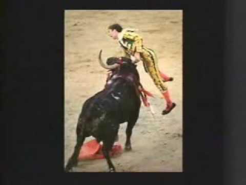 Matador Gets Gored