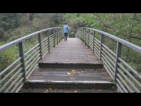 WEED IN TAiWAN Vlog?
