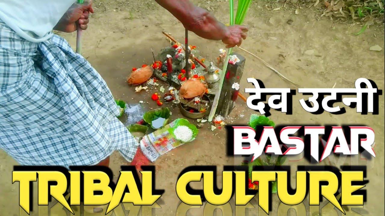 आदिवासी देवी देवताओं को नहीं चढ़ायेंगे तब तक नहीं खाते हैं कंद मूल  Unexplored Bastar Tribas Culture