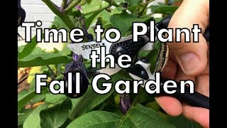 Time to Plant the Fall Garden & Bypass Pruning Shears Review