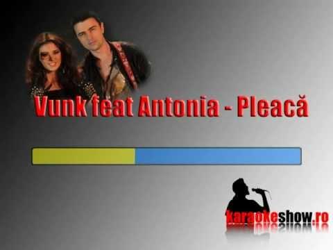 Vunk feat Antonia - Pleaca (karaoke).mp4