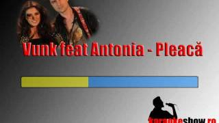 Vunk feat Antonia - Pleaca (karaoke).mp4
