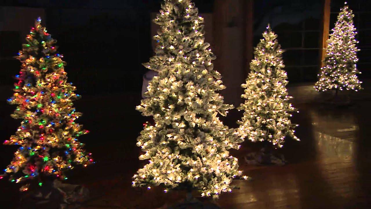 Bethlehem Lights 7.5' Woodland Pine Christmas Tree w/Instant Power ...