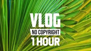 [1 Hour] - LiQWYD - Birthday (Vlog No Copyright Music)