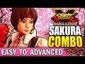 SFV SAKURA Combo Guide Easy to Advanced