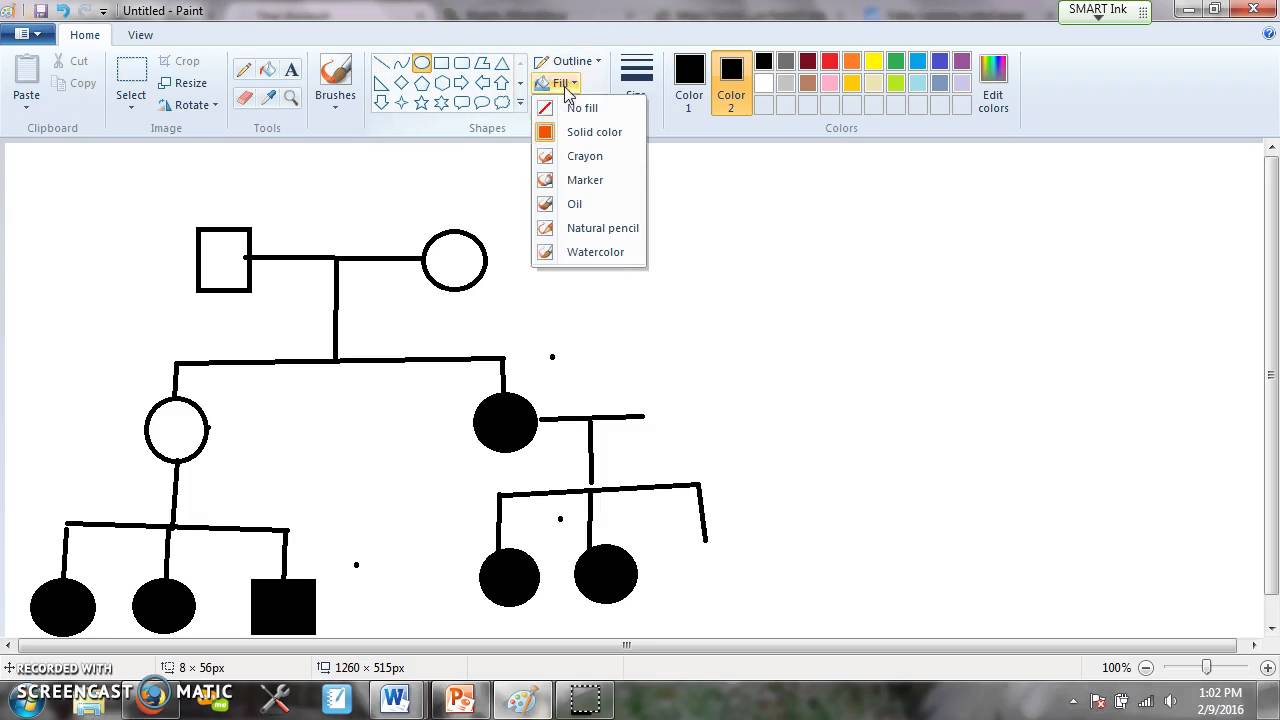 Interpreting Information in a Pedigree YouTube – Pedigree Worksheet Interpreting a Human Pedigree