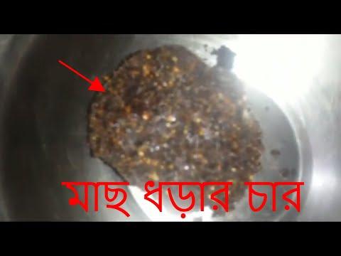 how to make fishing chara মাছ ধড়ার চার charai for fishing chum fishing bait mas dhorar char