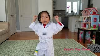 Taekwondo Board Breaking Demonstration - Yaya's Toy Time