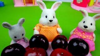 Видео для детей: Зайчата! Варим Компот из черешни!
