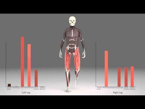 Week 5 Walking Analysis