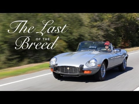 Jaguar E-Type - The Last of the Breed