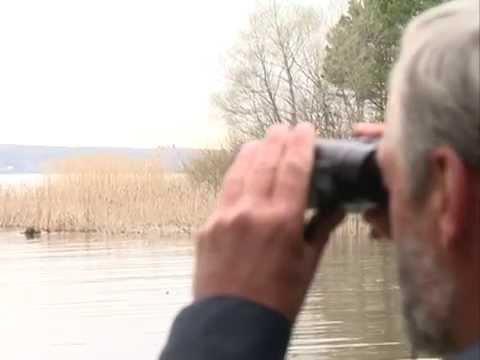 осенний нерестовый запрет на рыбалку 2015