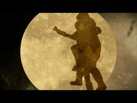 OWMI - Moonshot