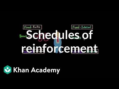 Operant conditioning: Schedules of reinforcement | Behavior | MCAT | Khan Academy