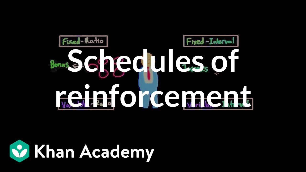 Operant conditioning: Schedules of reinforcement (video