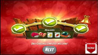 Beat The Daily Challenge King Pig Panic Completed in Angry Birds 2 SUNDAY