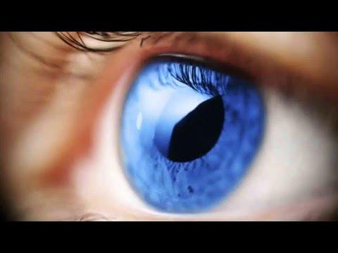 ? 8 Remedios caseros para el glaucoma