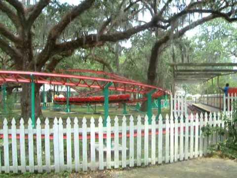Live Oak Ladybug at Carousel Gardens (2004) - YouTube