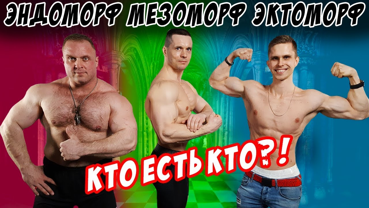 Как определить тип телосложения? (Виктор Блуд, Шреддер, Кузя, Саратов, Зум, Бабич!)