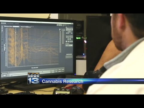 Medical cannabis dispensaries and manufacturers help fund cannabis research at UNM