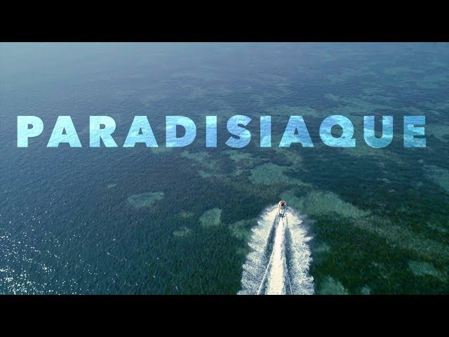 Paradisiaque 2018 - Beach show