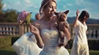 Почему выбирают ведущей на свадьбу Добрину? (Выездная регистрация)