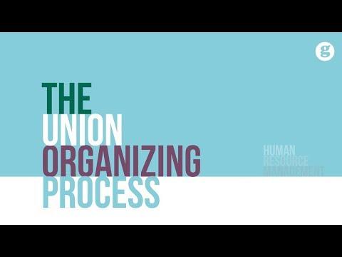 The Union Organizing