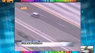 Женщина за рулем мочит авто приколы