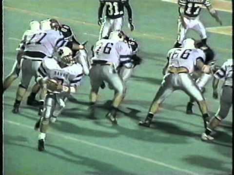 Back 2 Back: The 1994 And 1995 Berwick Bulldogs
