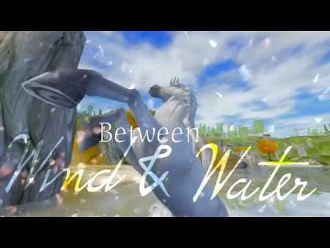 Between wind and water/ star stable online