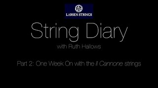 Ruth Hallows: Larsen Diary Part 2