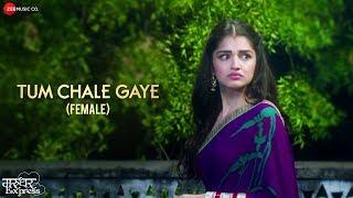 Tum Chale Gaye Female Version Aakanksha Sharma Mp3 Song Download